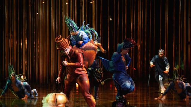 'Varekai', by Cirque Du Soleil