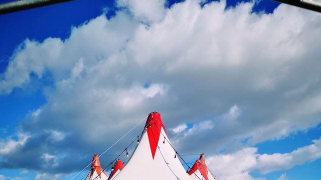Circus Sallai, 2018